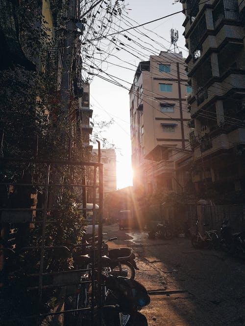 Free stock photo of ray of sunshine, sun rise