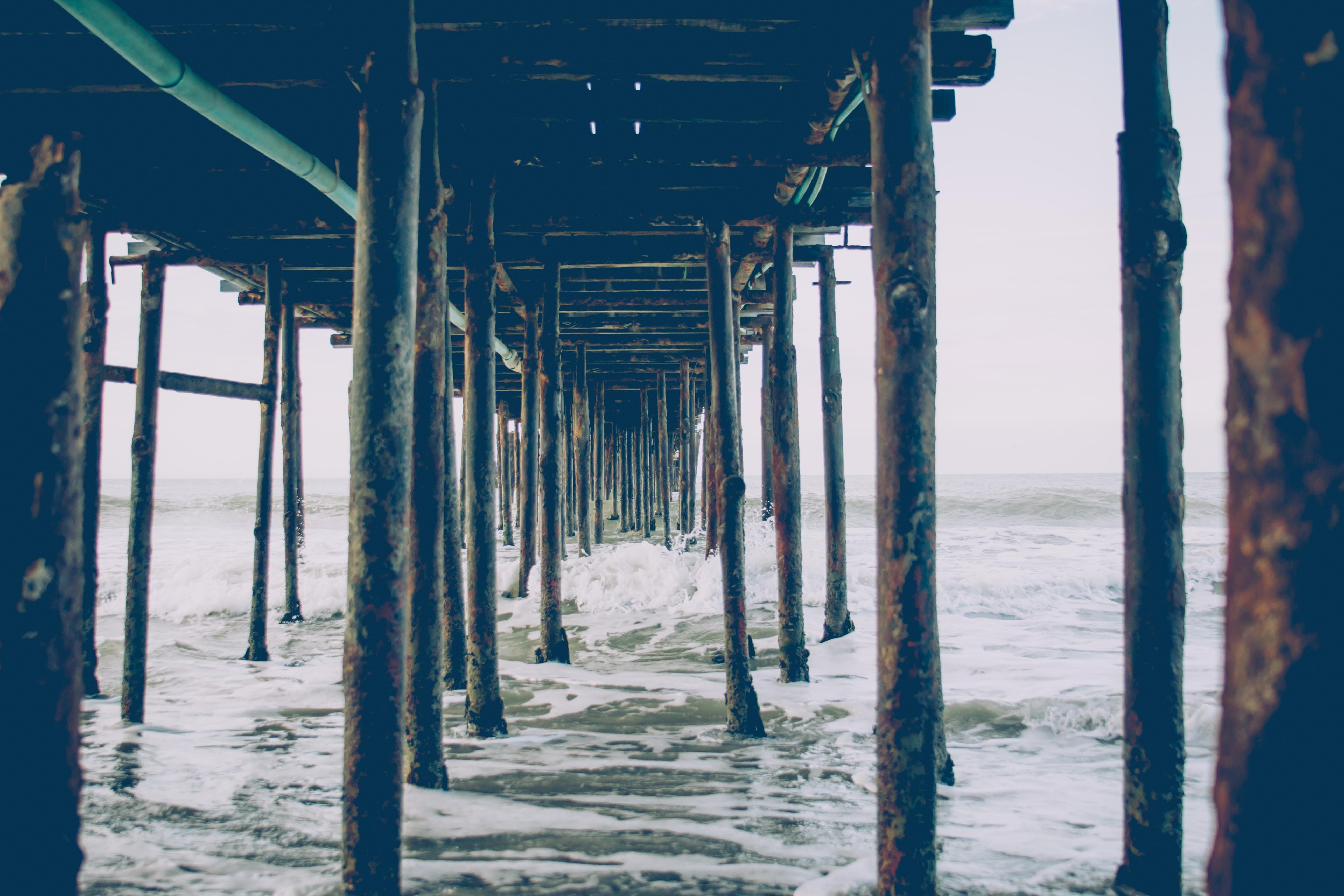 Free stock photo of beach, beachlife, deep sea, hipster