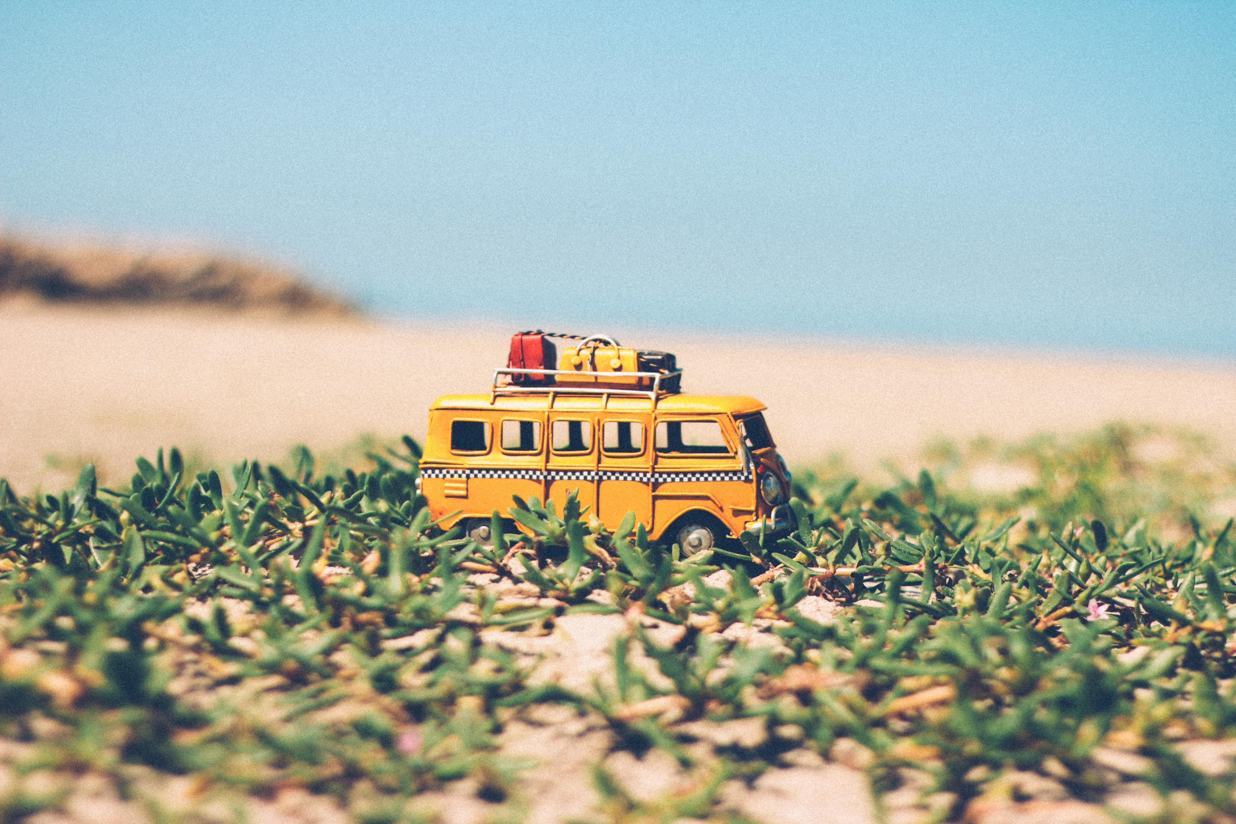 Yellow Die-cast Van on Green Seaweeds