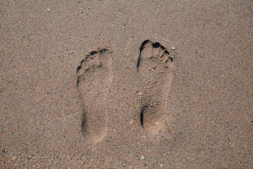 Immagine gratuita di bagnasciuga, impronte, litorale, macinato