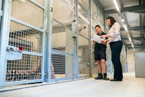 Engenheiro Projetando Zoo Cage