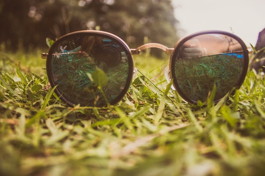 Free stock photo of nature, sunglasses, camera, field