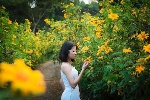 Gratis stockfoto met aziatische dame, bloeien, bloeiend, bloemen