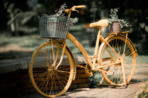 Brown Bike With Basket