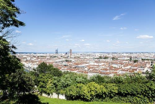 Free stock photo of city, ecotourism, green