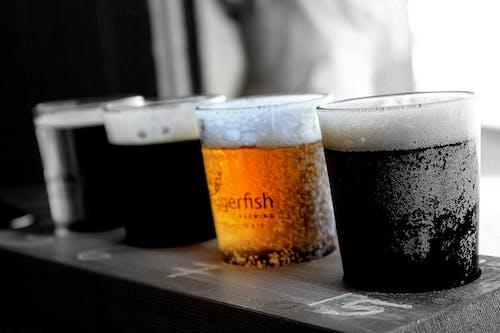 Free stock photo of beer, beer tasting
