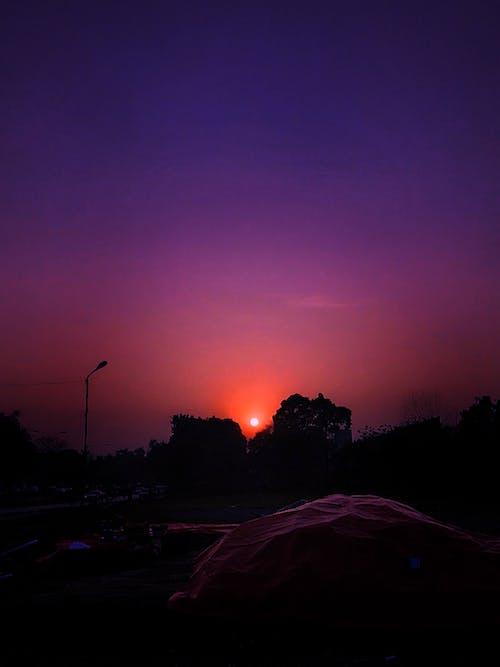 일몰보기, 핑크 하늘의 무료 스톡 사진