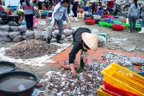 Photo Of Woman Picking Up Crabs
