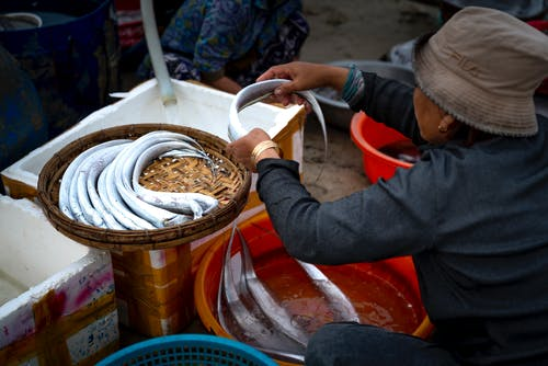 Person in Gray Long Sleeve Shirt Washing Fish