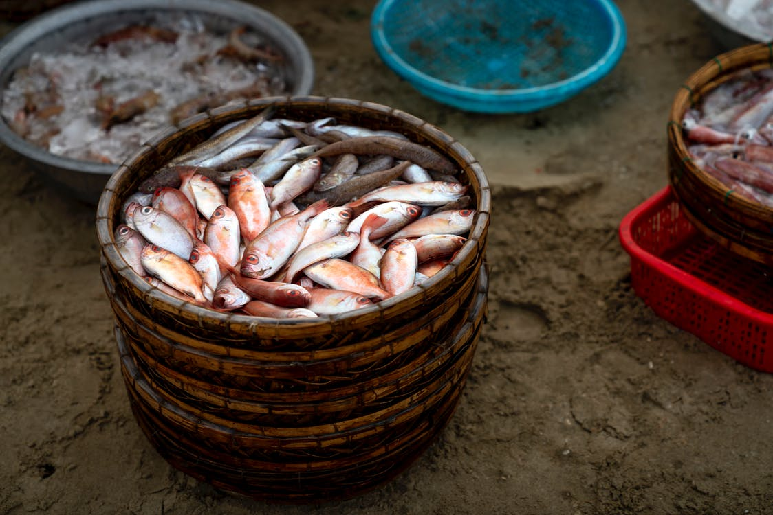 Photo Of Wooden Container Withe Fishes