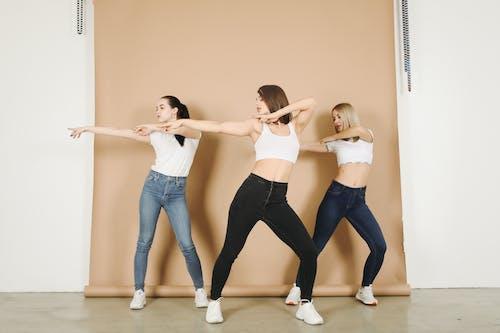 Fotobanka sbezplatnými fotkami na tému agilita, aktivita, aktívny, cvičenie