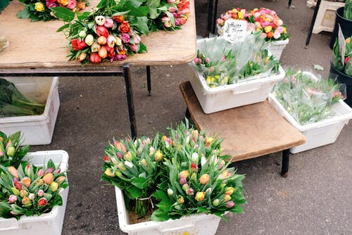 Containers with fresh flowers on stall in street market