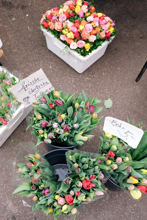 Colorful flowers in plastic boxes placed on ground in market
