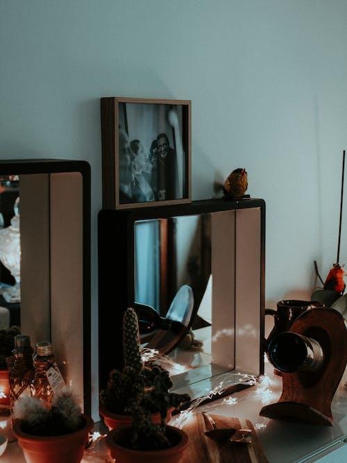 Бесплатное стоковое фото с в помещении, декорации, дерево, дизайн интерьера
