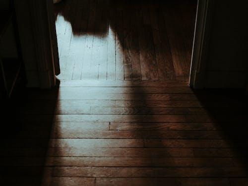 Foto profissional grátis de chão de madeira, fundo marrom, leve, light