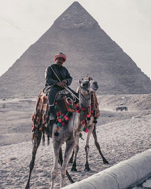 Kostenloses Stock Foto zu afrika, Ägypten, alt