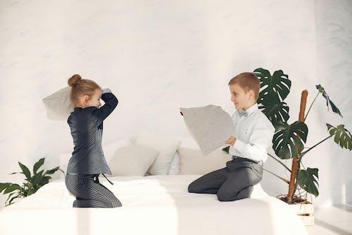 Gratis stockfoto met aanbiddelijk, activiteit, appartement