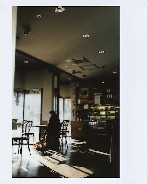 Imagine de stoc gratuită din cafenea, în interior, magazin de cafea