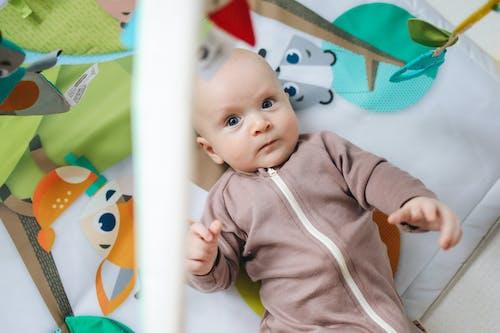Foto profissional grátis de adorável, bebê, bonitinho
