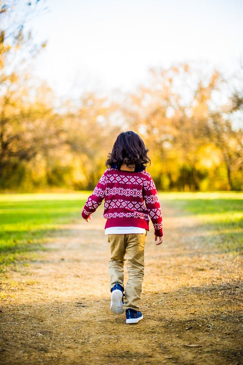 Back-view Photo of Child in Red and White Sweater Walking on Brown Field