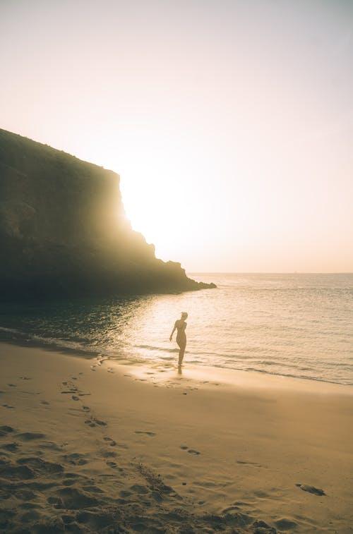 Immagine gratuita di alba, bagnasciuga, crepuscolo, isola