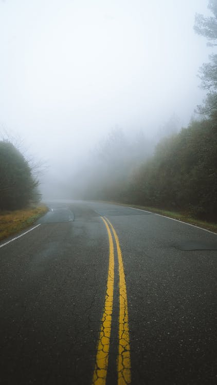 Concrete Road Between Green Trees On A Foggy Day