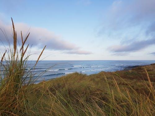 Immagine gratuita di acqua azzurra, mattina presto, nuova zelanda, onde della spiaggia