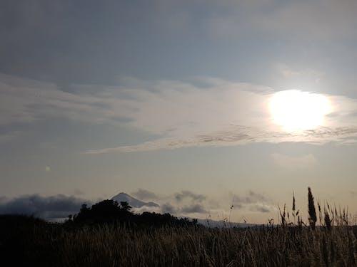 คลังภาพถ่ายฟรี ของ ขลัง, ดวงอาทิตย์, พระอาทิตย์, พร่ามัว