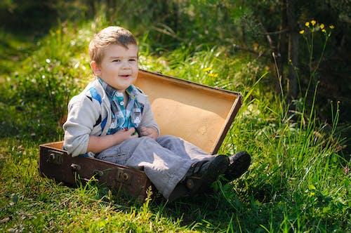 Kostnadsfri bild av barn, elegant, förtjusande
