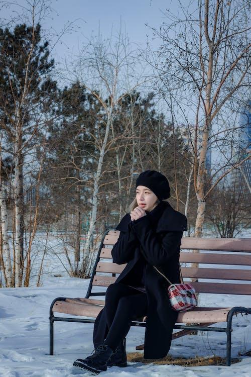 Kostenloses Stock Foto zu bank, frau, frost, jahreszeit
