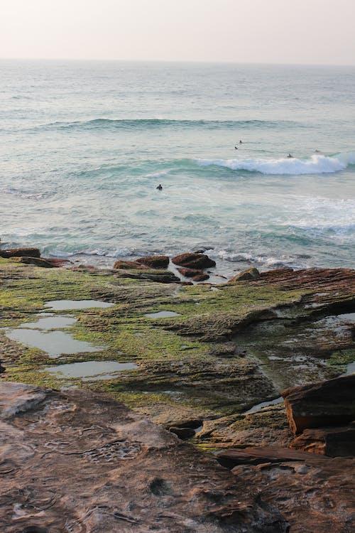 Grüne Und Braune Felsformation An Der Küste