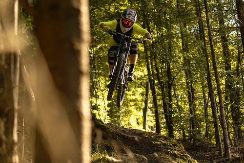 Immagine gratuita di alberi, appassionati di mountain bike, avventura