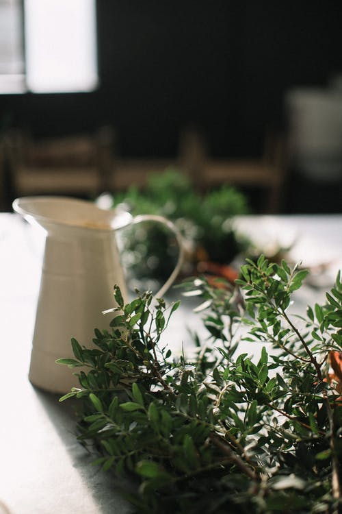 คลังภาพถ่ายฟรี ของ กระถาง, กลิ่นหอม, การทำอาหาร