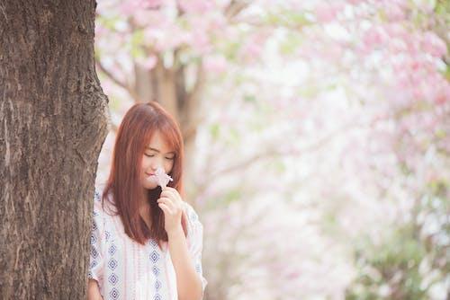 Imagine de stoc gratuită din arbore, copac, de sex feminin, drăguț