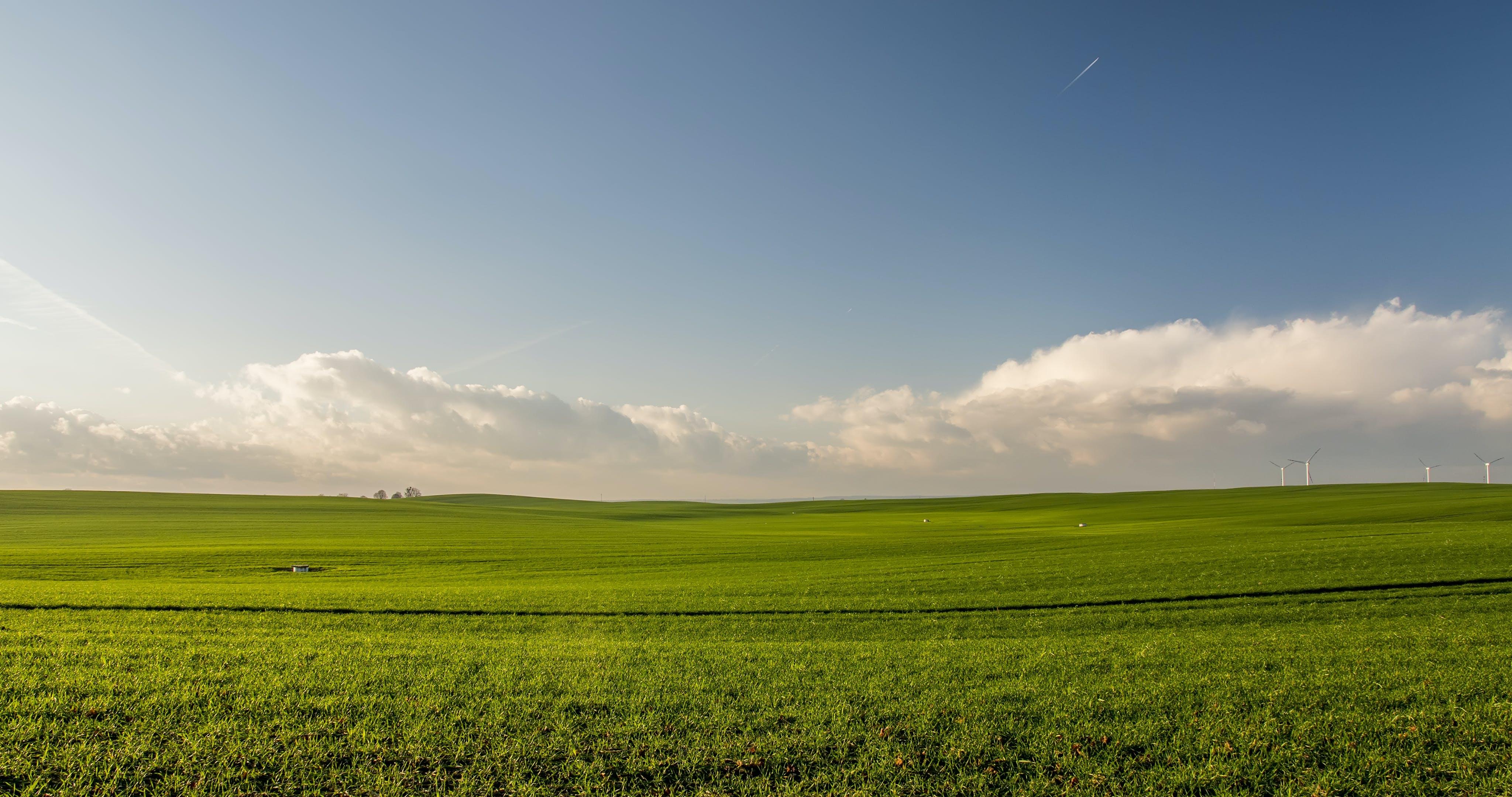 Fotos de stock gratuitas de aerogenerador, agricultura, campo, campos de cultivo