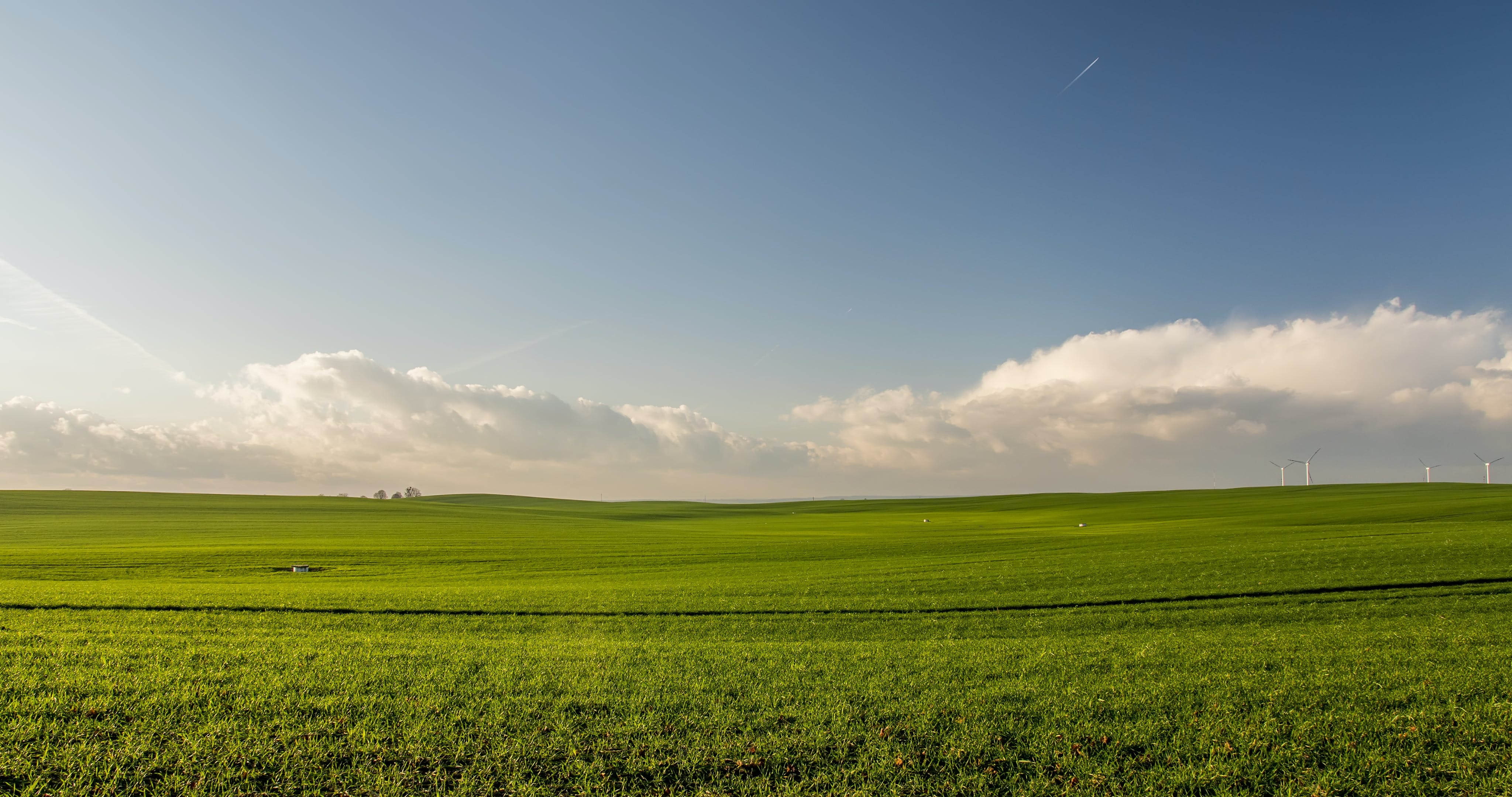 błękitne niebo, chmury, gospodarstwo