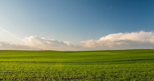 Fotos de stock gratuitas de aerogenerador, agricultura, al aire libre, campo
