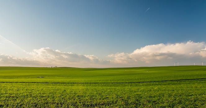 Horizon images pexels free stock photos - Open field wallpaper ...