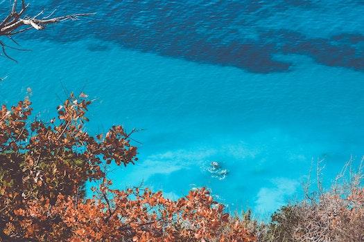 Nature wallpaper of sea, nature, water, ocean