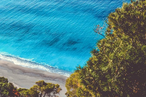 Ingyenes stockfotó fák, festői, homok, kék témában