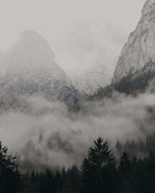Rocky Mountain Mit Nebel Bedeckt