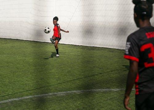 게임, 골, 공, 들판의 무료 스톡 사진