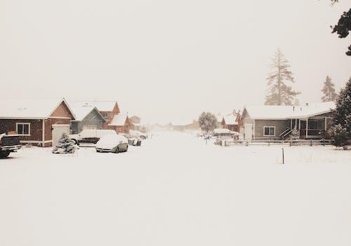 Základová fotografie zdarma na téma bílá, budovy, bungalov