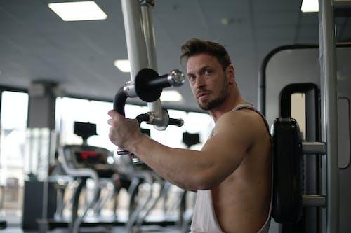 Imagine de stoc gratuită din antrenament, biceps, culturist