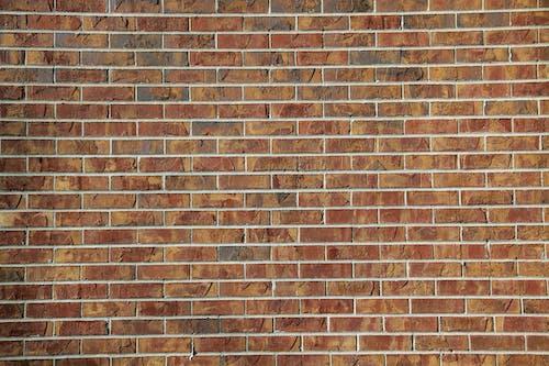 Free stock photo of brick wall, bricks, wall