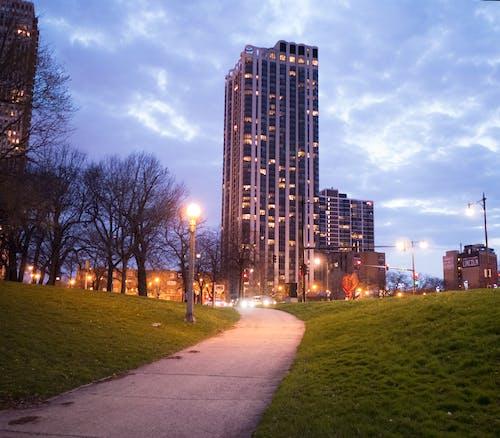 ライト, 丘, 夜明け, 歩道の無料の写真素材