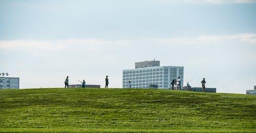 ネガティブスペース, 丘, 人, 凧の無料の写真素材