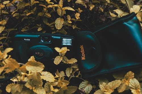 Free stock photo of action camera, artificial grass, camera, canon