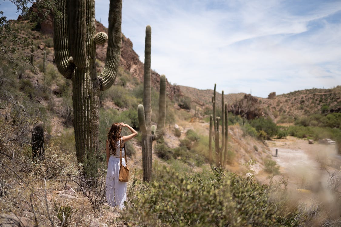 Woman Standing Near Cactus Plant