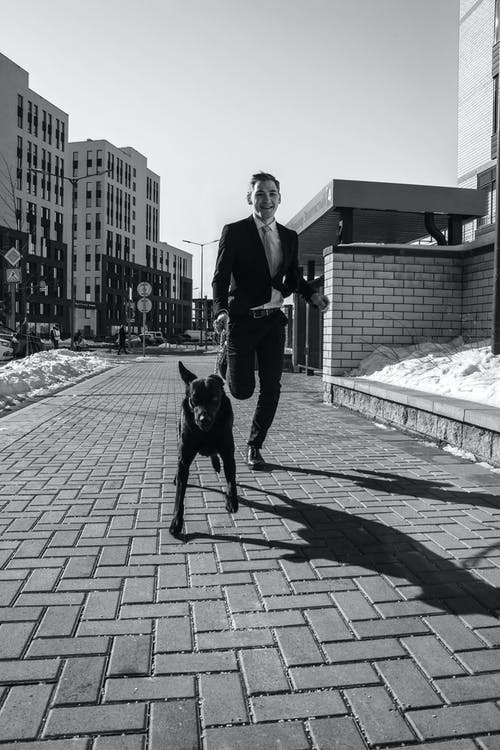 Man In Black Suit Jacket And Pants Walking A Dog